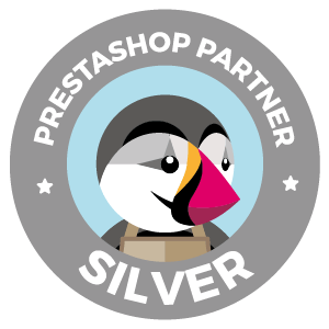 Agencia PrestaShop Silve